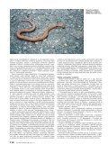 Studie souăasného roz‰ífiení - Page 3