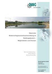Naturnahe Niederschlagswasserbewirtschaftung im ...