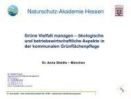 13n158kommgruenvielfaltmanagen.pdf