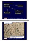 Grünlandanlage mit Gebietsheimischem Saatgut - Naturschutz ... - Seite 2