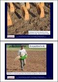 Grünlandanlage mit Gebietsheimischem Saatgut - Naturschutz ... - Seite 3