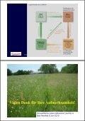Grünlandanlage mit Gebietsheimischem Saatgut - Naturschutz ... - Seite 7