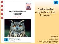 PDF - Naturschutz-Akademie Hessen