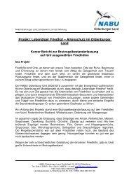 Projekt: Lebendiger Friedhof – Artenschutz im ... - NABU Oldenburg