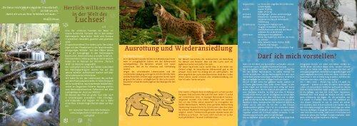 Luchspfad - Nationalpark Bayerischer Wald