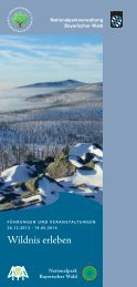 Download Winter-Veranstaltungsprogramm 2013/14 - Nationalpark ...