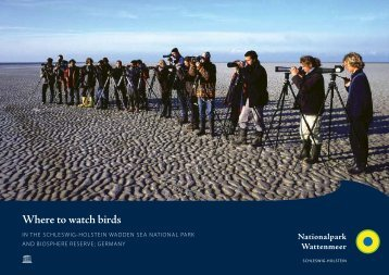 Where to watch birds - Nationalpark Wattenmeer