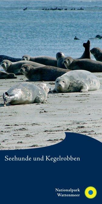 Broschüre Robben.indd - Nationalpark Wattenmeer