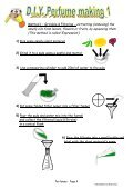 Adapted version (pupil worksheet) - National STEM Centre - Page 4