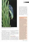 21-25 Flatterhaft.qxd - Natürlich - Page 5