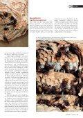 20-25 Hornissen - Natürlich - Page 4