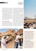 16-21 Storchenzug-3 - Natürlich - Page 3
