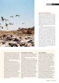 16-21 Storchenzug-3 - Natürlich - Page 4