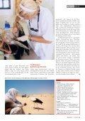 16-21 Storchenzug-3 - Natürlich - Page 6