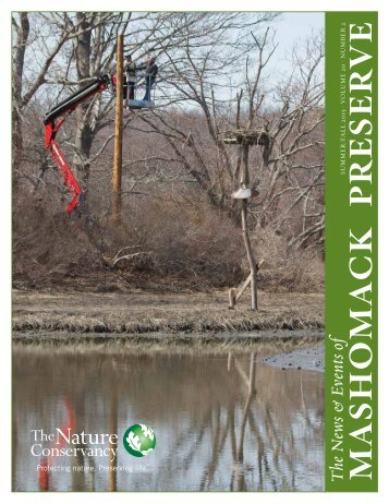 Newsletter - The Nature Conservancy