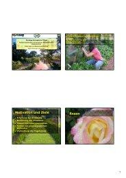 DI Pleininger und Fiona Kiss - Natur im Garten