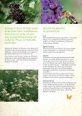 Brühen, Jauchen, Tees - Natur im Garten - Seite 2