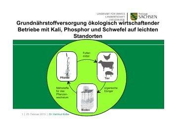 Grundnährstoffversorgung ökologisch wirtschaftender ... - Naturland