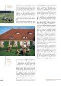 Download Image-Broschüre S. 18-27 - Naturpark Lauenburgische ... - Seite 3
