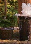 Download Image-Broschüre S. 18-27 - Naturpark Lauenburgische ... - Seite 4