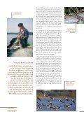 Download Image-Broschüre S. 4-13 - Naturpark Lauenburgische Seen - Seite 4