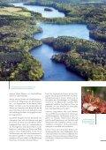 Download Image-Broschüre S. 4-13 - Naturpark Lauenburgische Seen - Seite 6