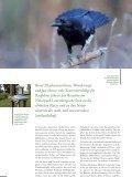 Download Image-Broschüre S. 14-17 - Naturpark Lauenburgische ... - Seite 3