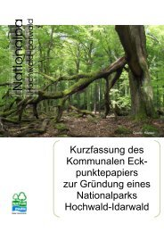 Kurzfassung Eckpunktepapier NLP Hochwald-Idarwald