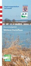Mittlere Horloffaue - Tiefenbach - Bingenheim