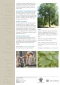 Bævreasp - Naturstyrelsen - Page 2