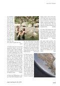 26-2013 (2.5MB) - Gemeinde Neftenbach - Page 5