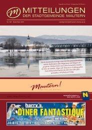 Stadtzeitung herunterladen - NetTeam Internet-Lösungen
