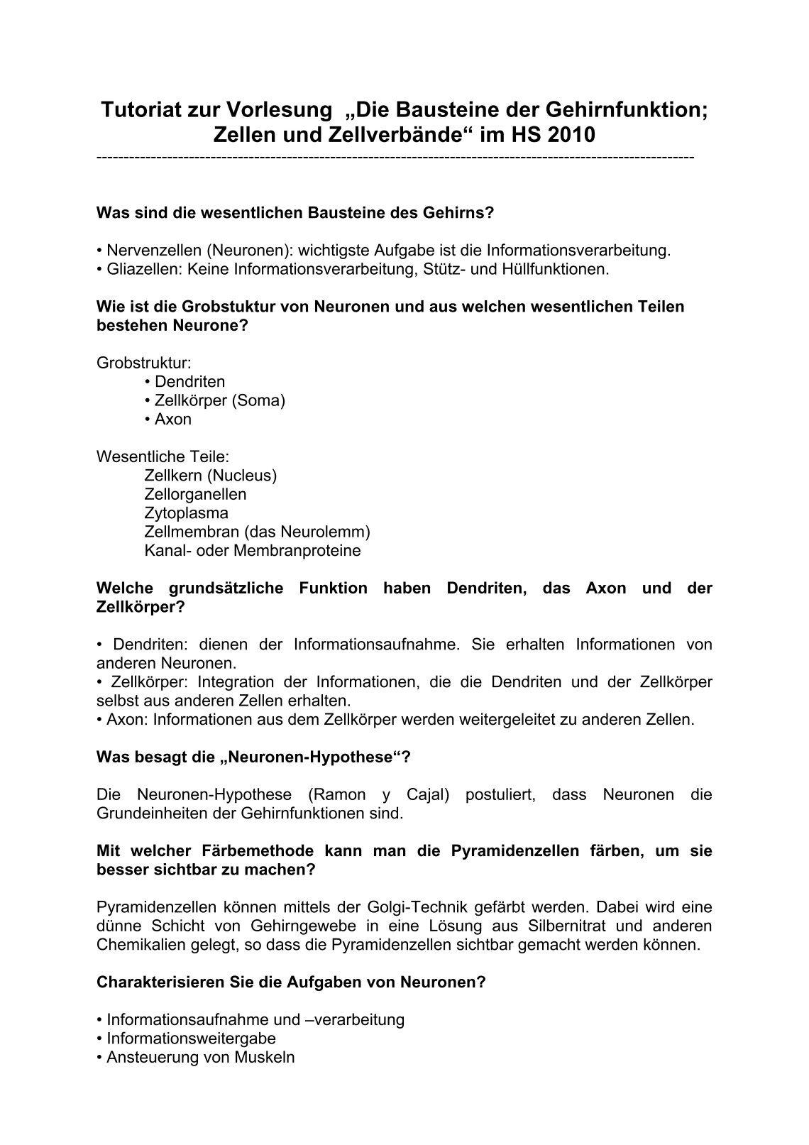 Tolle Hirnanatomie Bild Fotos - Physiologie Von Menschlichen ...