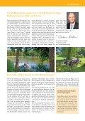 Download (PDF 9,55 MB) - Niederlausitz - Seite 3