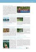 Download (PDF 9,55 MB) - Niederlausitz - Seite 7