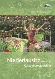 Download (PDF 4,63 Mb) - Niederlausitz