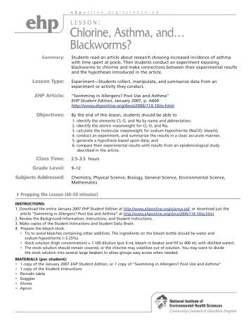 blackworm circulatory system