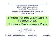Trends und Probleme aus der Praxis - GV-Solas