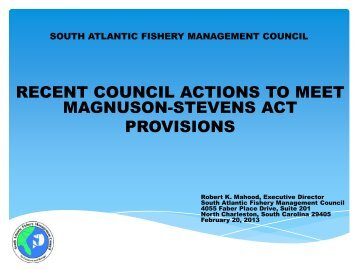 South Atlantic FMC Report - NOAA Fisheries