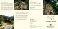 Chancen für die Region. Der Schwarzwald Nationalpark. (PDF)
