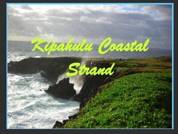Kipahulu Coastal Strand