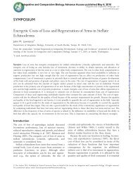 Energetic Costs of Loss and Regeneration of Arms in Stellate ...