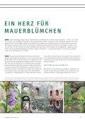 Die NRW-Stiftung - Page 7