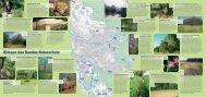 Biotope - Natur in unserer Hand - Bund Naturschutz Nürnberg