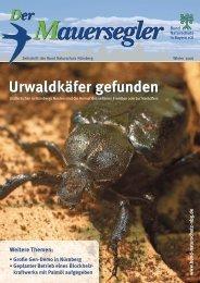 Urwaldkäfer gefunden - Bund Naturschutz Nürnberg