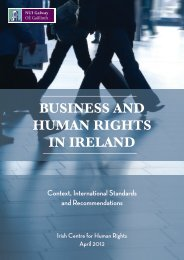 BUSINESS AND HUMAN RIGHTS IN IRELAND - National University ...