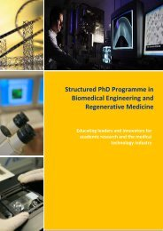 Structured PhD Programme in Biomedical Engineering and ...