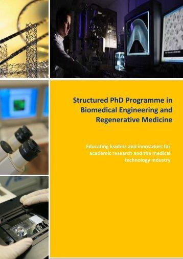 Download free Yale Biomedical Engineering Phd Program ...