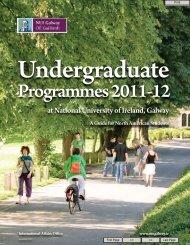 Undergraduate - National University of Ireland, Galway
