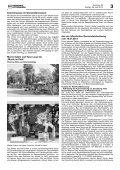 Erhöhte Waldbrandgefahr - Nussbaum Medien - Page 3